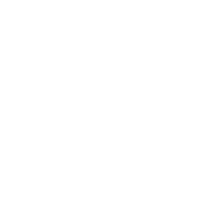 Every day Sunny day